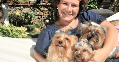 Dog's Mon Cheri: Fashion for our four legged friends